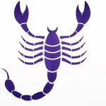 для скорпионов